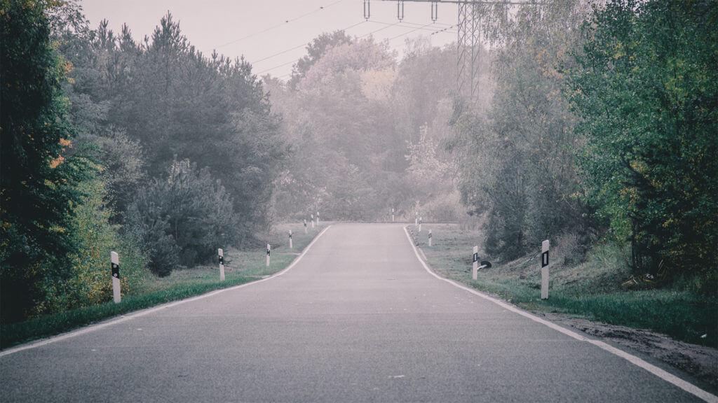Deine Herbstfotografie verbessern, indem du den Nebel am frühen Morgen nutzt und in deine Bilder einbindest.